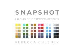 Snapshot – Rebecca Chesney